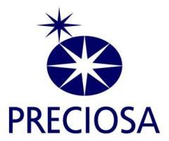 Logo Preciosa 300